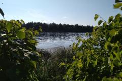 reka-gatchiny