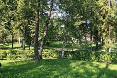 zelenaya-gatchina