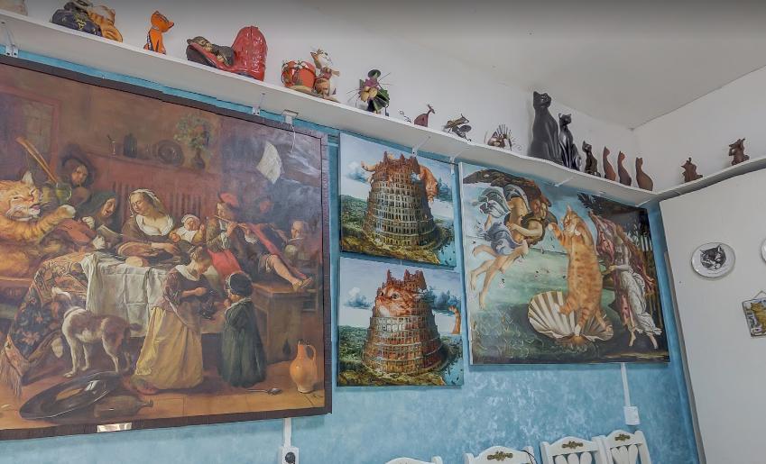 Выставки в музее кошки