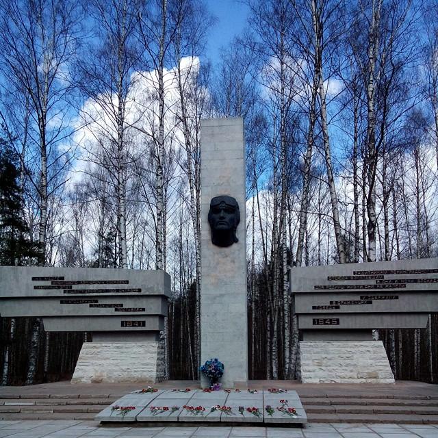 Памятник Защитникам Ленинградского неба