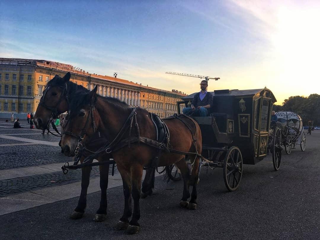 карета с лошадьми на Дворцовой площади