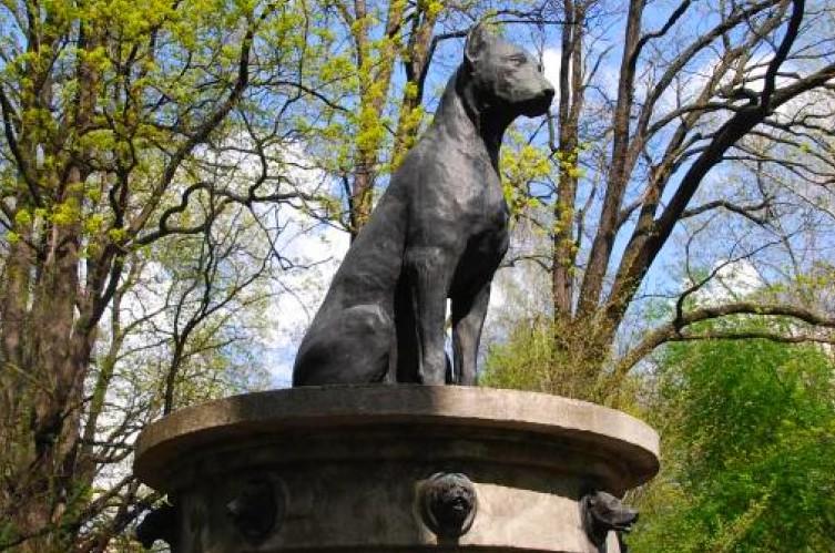 Памятник собак Павлова спб