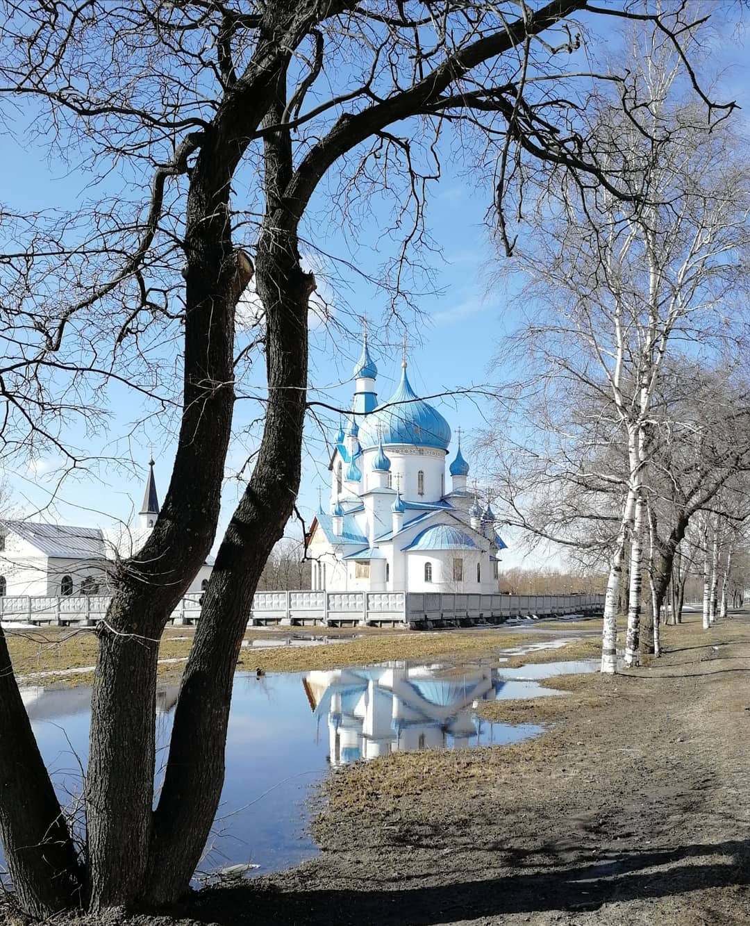 Пулковский парк фото