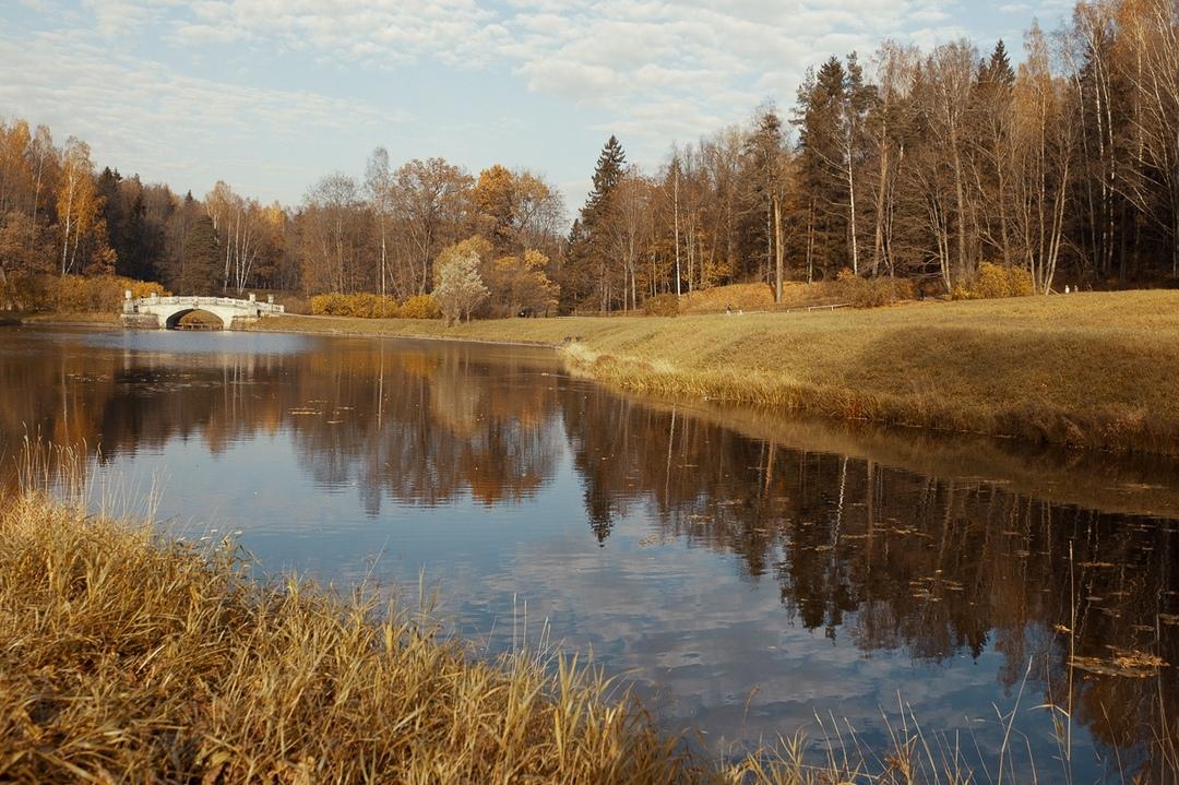 Павловский парк фото