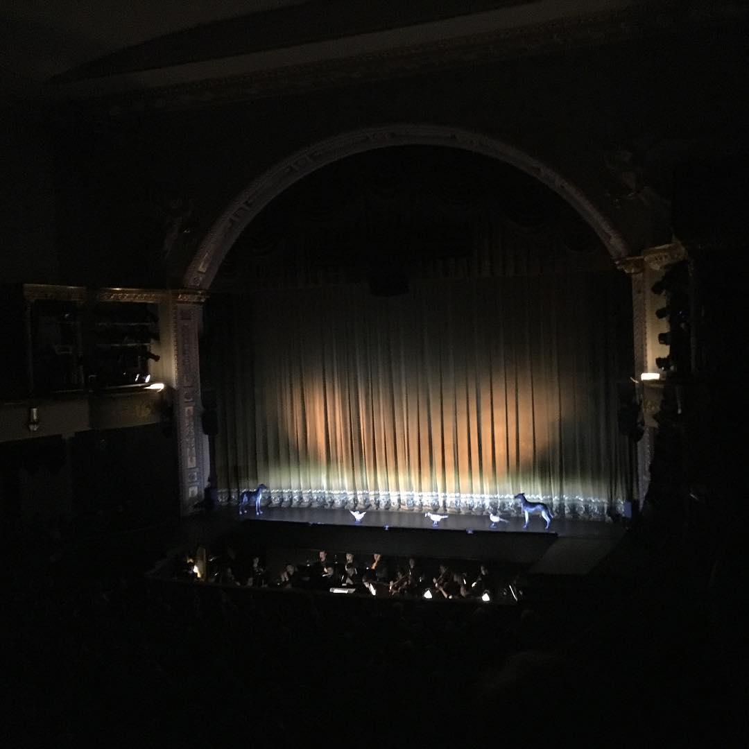 Сцена театра Музыкальной комедии